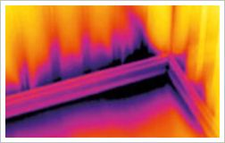 Olika-temperaturer-visas-på-värmefotot